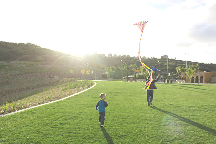 kiteflying3